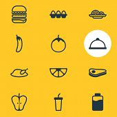 Vector Illustration Of 12 Meal Icons Line Style. Editable Set Of Paper Cup, Meal, Lactose And Other  poster