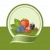 fresh berries illustration, vector label