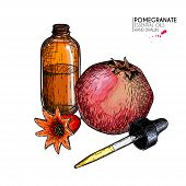 Hand Drawn Set Of Essential Oils. Vector Pomegranate And Flower. Medicinal Herb With Glass Dropper B poster