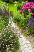 Path In Blooming Garden