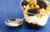 Blackberry, granola and vanilla yogurt parfait