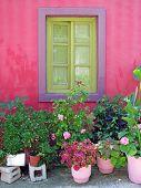 Vasos de flores sob a janela