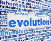 Evolution poster background design