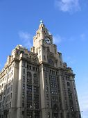 Liver Building In Liverpool poster