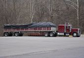 picture of tarp  - semi truck with tarp covering load - JPG