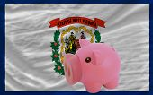Piggy Rich Bank And  Flag Of American State Of West Virginia