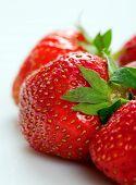 fresa en blanco