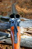 foto of hunt-shotgun  - Old handgun for hunt in wood - JPG
