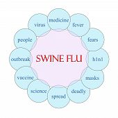 Swine Flu Circular Word Concept