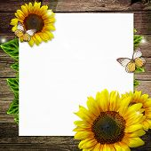 Blank Paper With  Yellow Sunflowers On Wooden Background