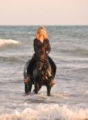 image of beautiful horses  - blond woman on her stallion in the sea - JPG