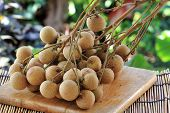 Close Up Longan Fruit