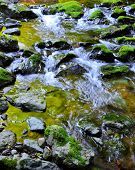Mossy Rocks with flowing water from mountains