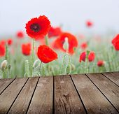 Field Of Poppies And Empty Wooden Deck Table