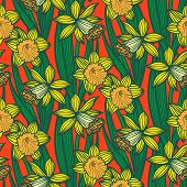 foto of jonquils  - Hand drawn vintage floral pattern with daffodils or narcissus - JPG