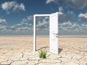 Single open door in cracked desert with clump of grass