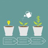 Idea bulb seed, watering can, dollar plant in pot.