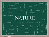 Nature Word Cloud Concept On A Blackboard