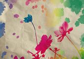 picture of cosmos flowers  - Cosmos flower with watercolor splash on grunge paper background - JPG