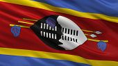 Flag of Swaziland waving in the wind
