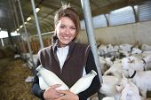 picture of dairy barn  - Smiling woman in barn holding bottles of milk - JPG