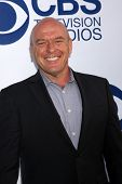 LOS ANGELES - MAY 19:  Dean Norris at the CBS Summer Soiree at London Hotel on May 19, 2014 in West
