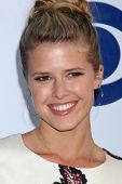 LOS ANGELES - MAY 19:  Sarah Wright at the CBS Summer Soiree at London Hotel on May 19, 2014 in West