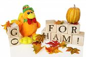 High view of a plush orange turkey standing among colorful leaves and alphabet blocks that spell out