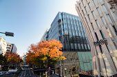 Tokyo - Nov 24: Variety Retail Shops On Omotesando Street