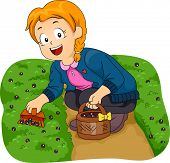 Illustration Featuring a Little Girl Picking Berries