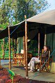 Safari vacation. Woman enjoying evening sitting by a tent