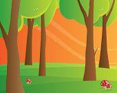 Mushroom in forest