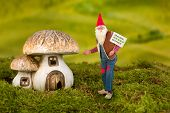 Real life garden gnome pointing at his toadstool house