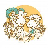 Ram and sheep