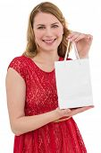 Pretty blonde in red dress holding a shopping bag on white background