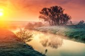 picture of toned  - Majestic foggy river with fresh green grass in the sunlight - JPG