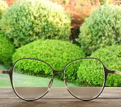 Vision concept. Glasses on green lush bushes background