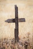 stock photo of crucifix  - Decayed wooden crucifix tied with wire in overgrown weeds - JPG