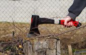 stock photo of ax  - Cut off the branches of trees with ax on a tree stump