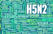 picture of avian flu  - H5N2 Concept as a Medical Research Topic - JPG