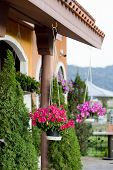 stock photo of front-entry  - Hanging baskets of flowers at the front porch