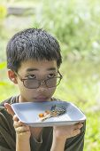 picture of snakehead  - Portrait of Asian Thai pensive boy looks at fish bone of common snakehead fish fried eaten clearly on plate - JPG