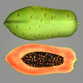 picture of pawpaw  - The papaya - JPG