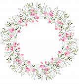 picture of sweet pea  - Detailed contour wreath with herbs - JPG