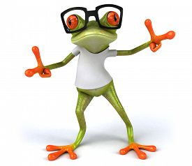 picture of amazonian frog  - Frog with a white tshirt - JPG
