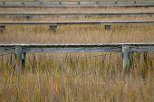 Docks In The Marsh In Color