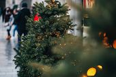 Stylish Garland Lights On Christmas Trees Fir Branches With Christmas Decorations  In European City  poster