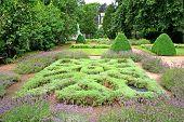 A knot garden part of a formal garden.