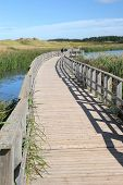 A boardwalk across a salt marsh and between the sand dunes in Cavendish National Park, Prince Edward Island, Canada.
