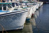 stock photo of lobster boat  - Lobster fishing boats tied up at the wharf in Malpaque - JPG